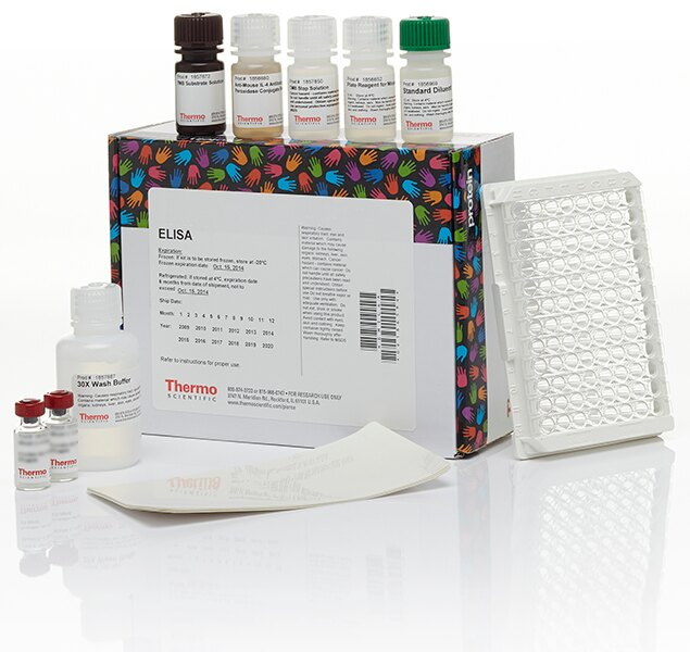 MEK 1 (total) ELISA Kit, Multispecies